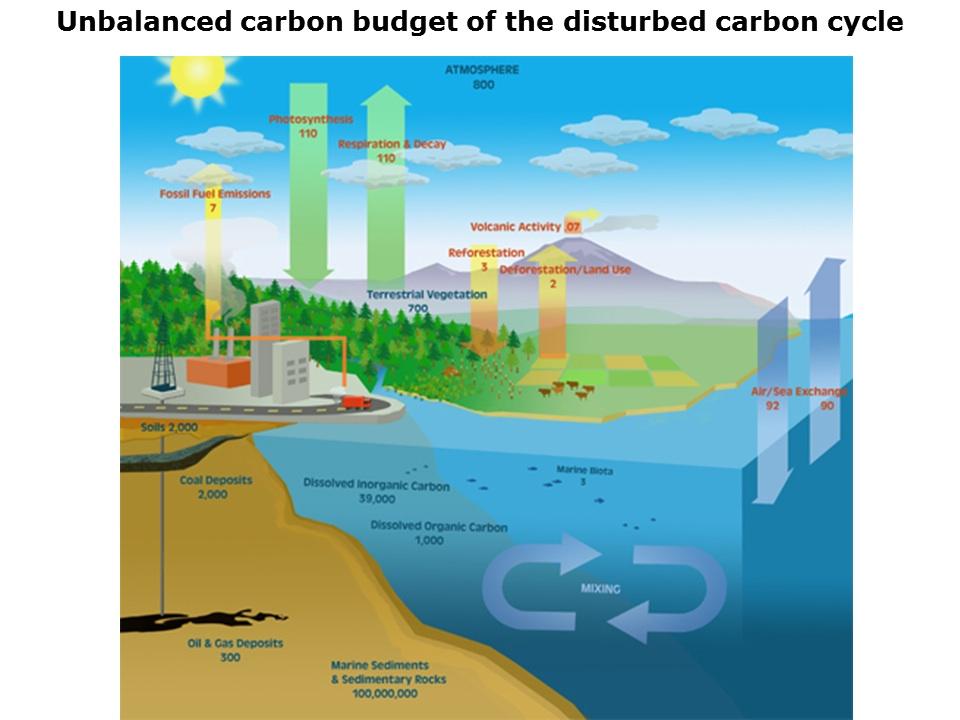 Unbalanced Carbon Budget