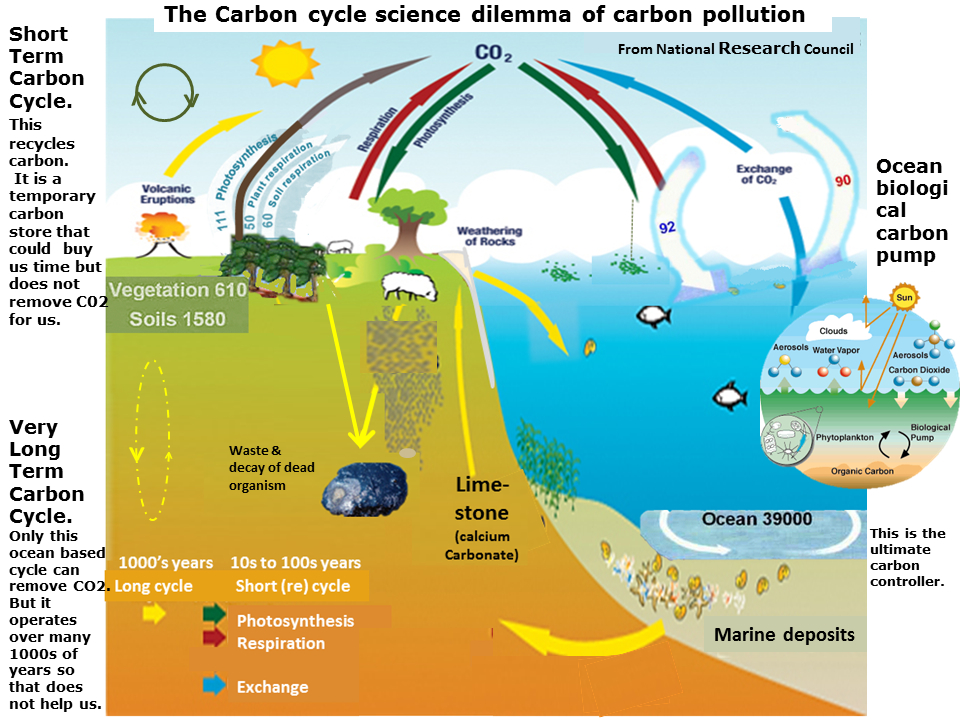 Short long term carbon cycle carbon neutral commons composite from national research council and unep sourced from httponlyzerocarboncarboncycleml ccuart