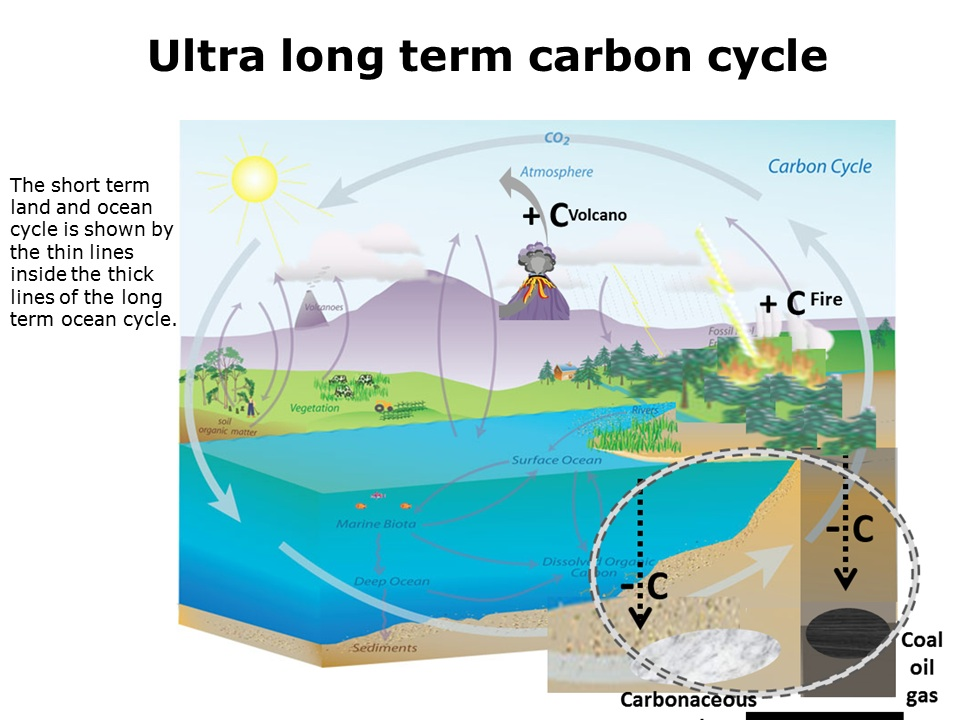 long_term carbon cycle