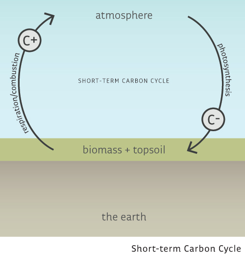 Essential understanding carbon neutral commons web short term carbon ccuart Choice Image